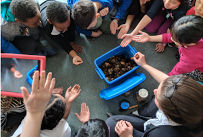 Kim Stemshorn with several children surrounding a small indoor worm composting bin.