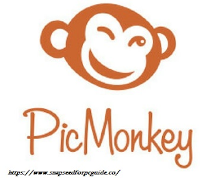 picmonkey for pc