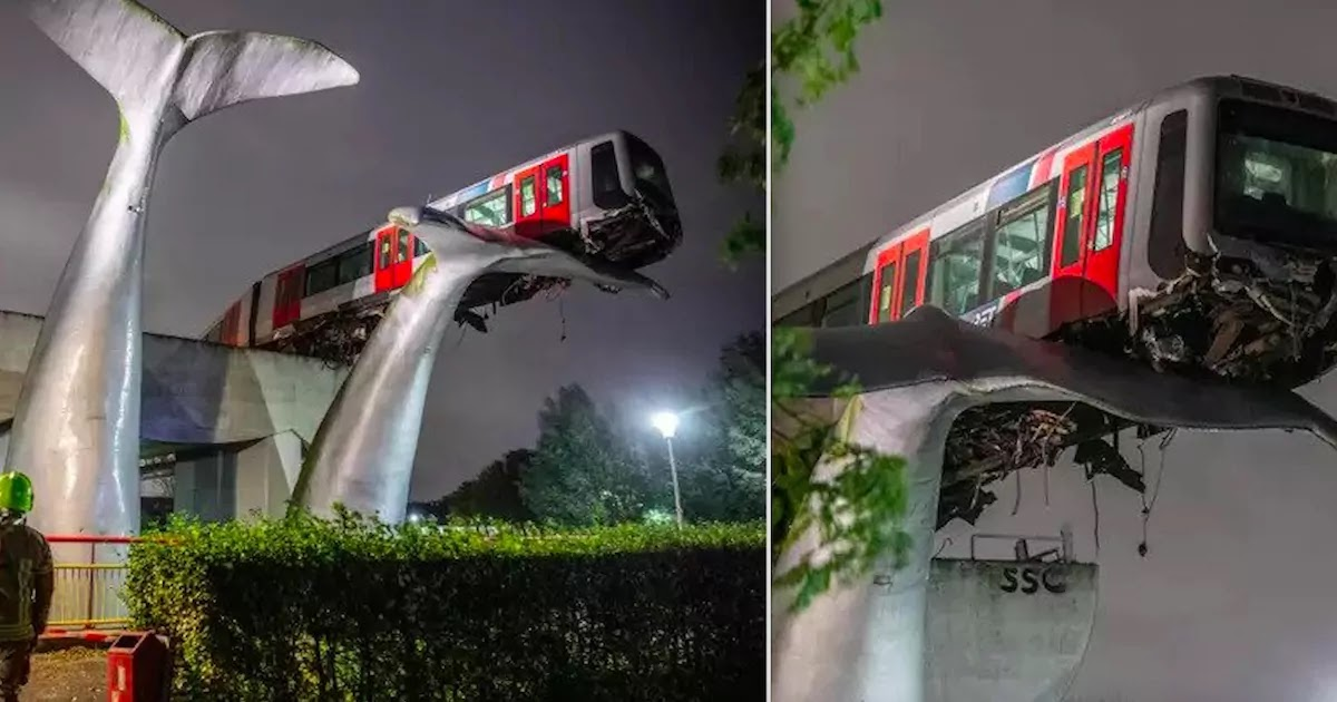 Train In Netherlands  Is Saved From 10 Meter Drop By Art Installation Of Giant Whale After Crashing Through Barrier