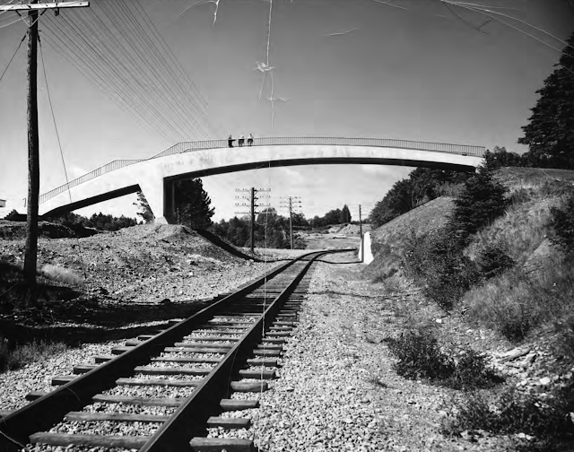 Van Ginkel Footbridge, 1962