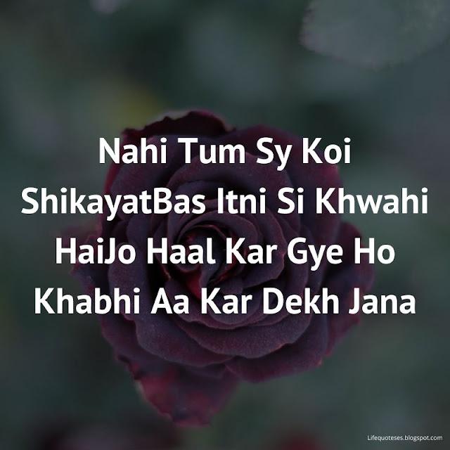 Love Shayari Images In English