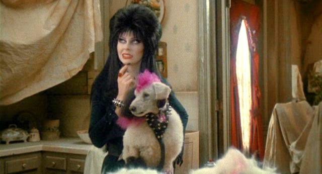 Elvira, reina de las tinieblas, 2