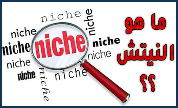 ما هو النيتش Niche؟ وكيفية انشاء موقع لربح أموال محترمة