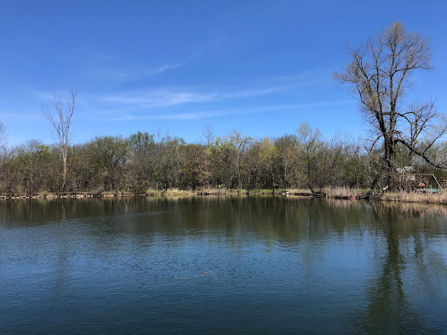 The tranquil lake at Equestrian Connection provides for serenity and healing during veteran's fishing programs and more.