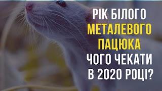 Білий Пацюк на порозі: яких сюрпризів чекати в 2020 році?