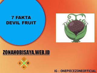 Semua Devil Fruit Menarik, Berikut 7 Fakta Devil Fruit