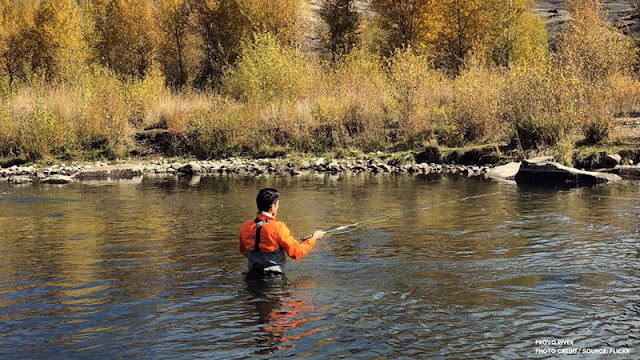 Fisherman wading into Provo River
