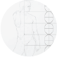 Generalized figure proportions for a male