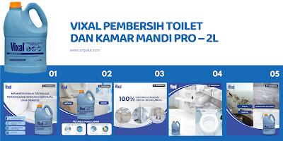 vixal pembersih toilet pro