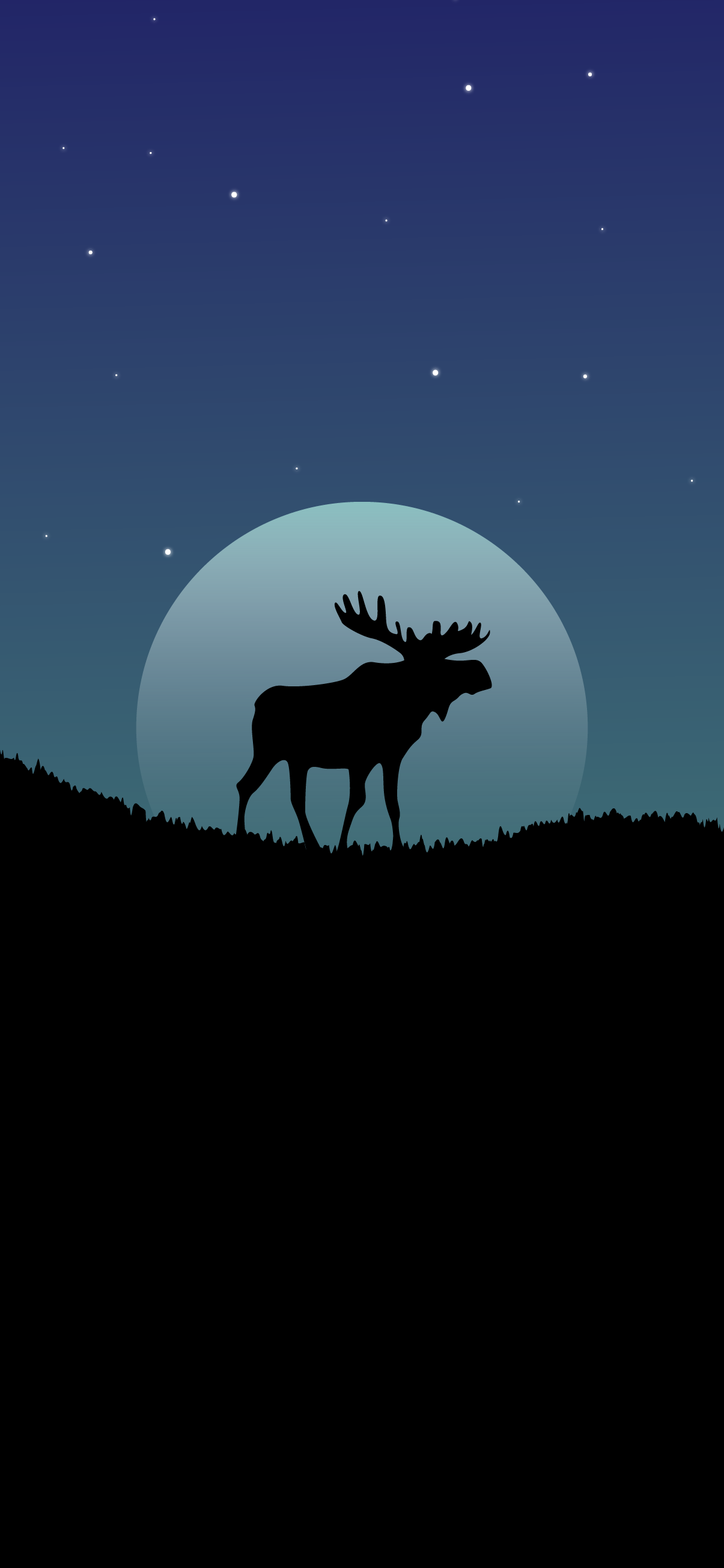 beautiful and cool wallpaper amoled for mobile phone moose animal night