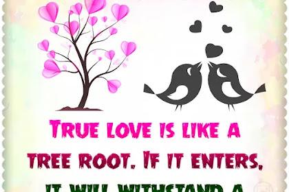 True love is like a tree root