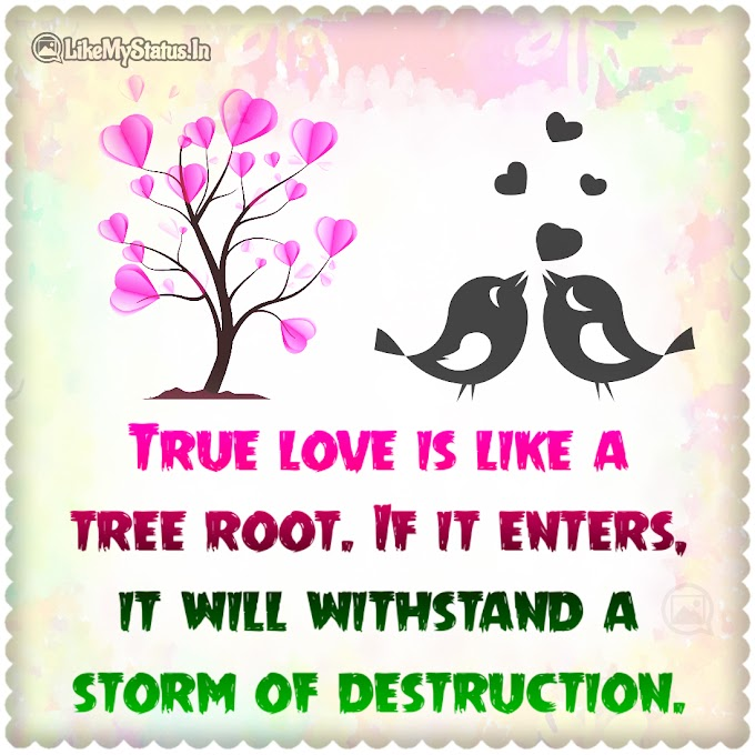 True love is like a tree root