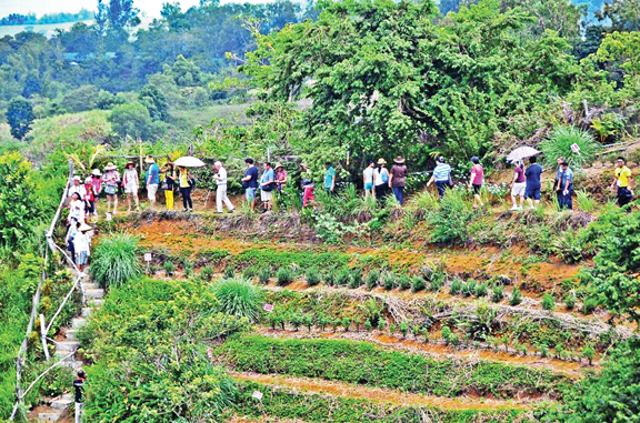how important is tourism and agriculture Tourism based on ethical values with attention to the the importance of organic agriculture  also by the most important international institutions.