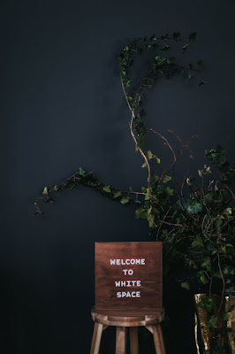 Minimal-Climbing-Ivy-Arrangement-Studio-Dinner-Party-Design