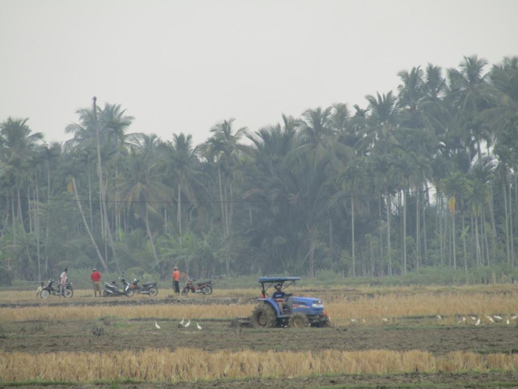 Traktor Sedang Membajak Sawah di Sekitar Gampong Cot Baroh