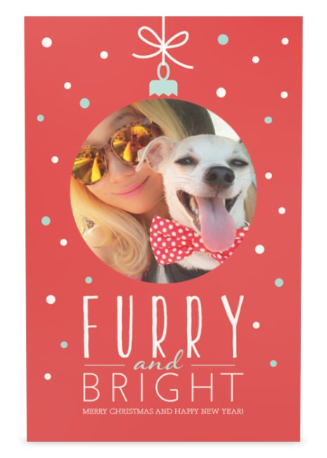 Furry and Bright...Merry Christmas & Happy Holidays!