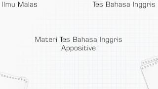 Materi Tes Bahasa Inggris Appositive