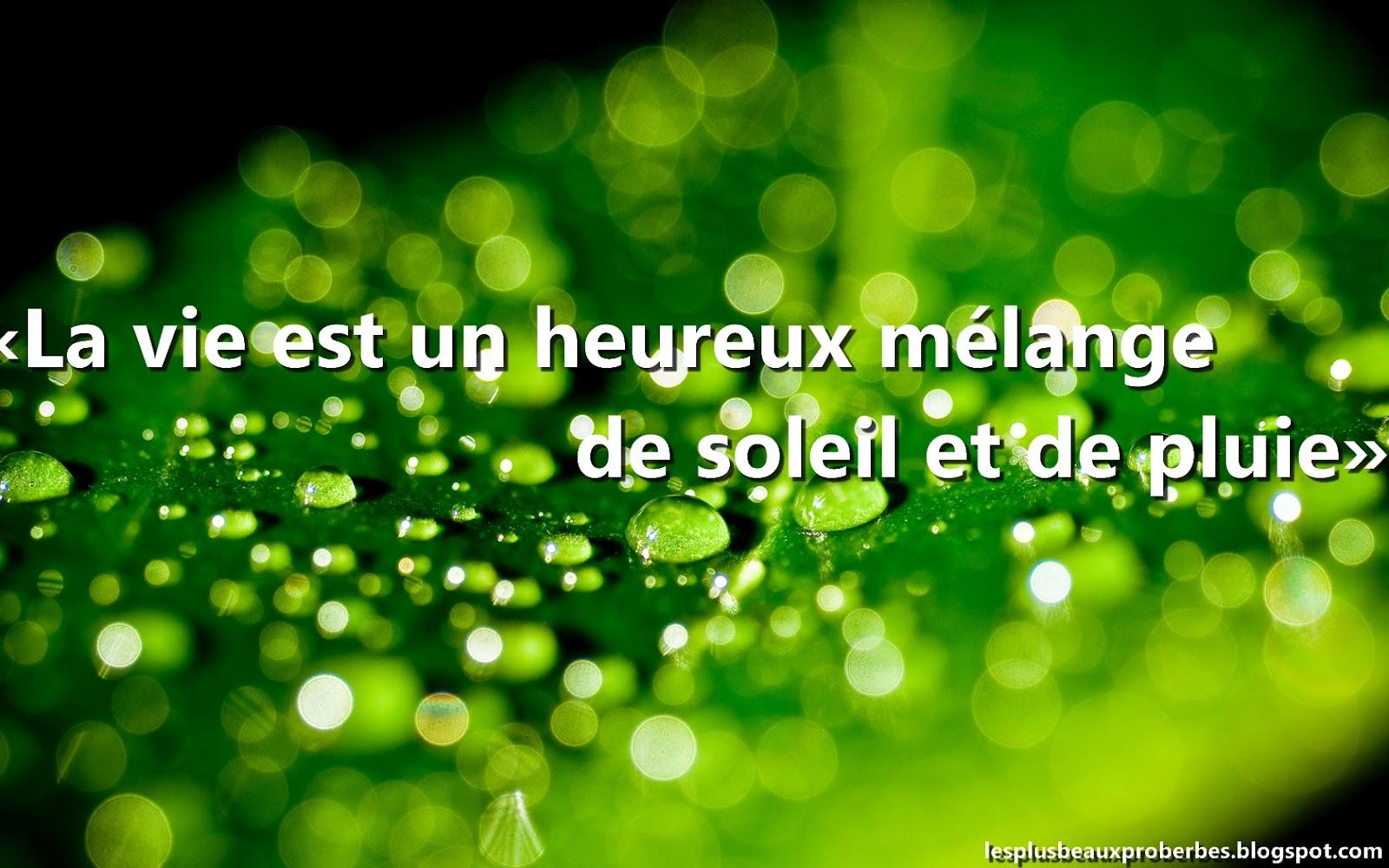 Francais Related Keywords & Suggestions - Les Proverbes Francais ...