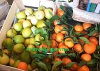 Logo Vinci gratis 20 kg arance, limoni e pompelmi rosa