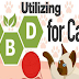Utilizing CBD for Cats #infographic