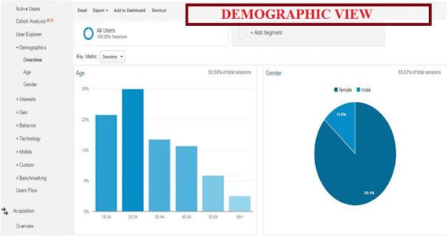 demographic view report of google analytics