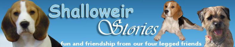 Shalloweir Stories