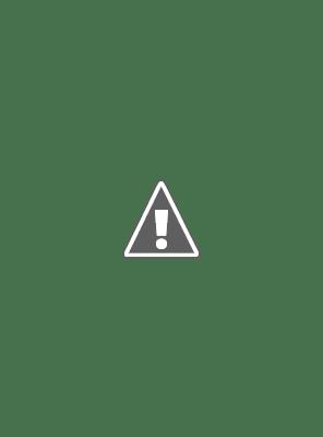 Disney Cruella  Official Trailer