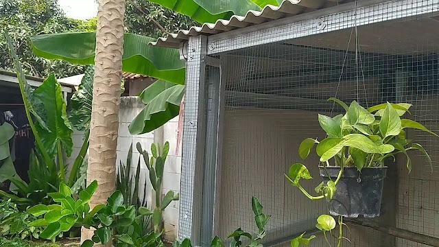 Kandang ayam baja ringan dinding grc