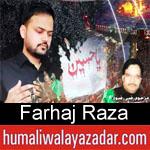 https://www.humaliwalyazadar.com/2018/09/farhaj-raza-nohay-2019.html