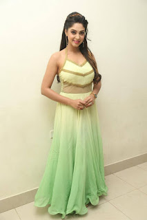 Actress Angana Roy Latest Pohtos in Long Dress at Sri Sri Movie Audio Launch 0027