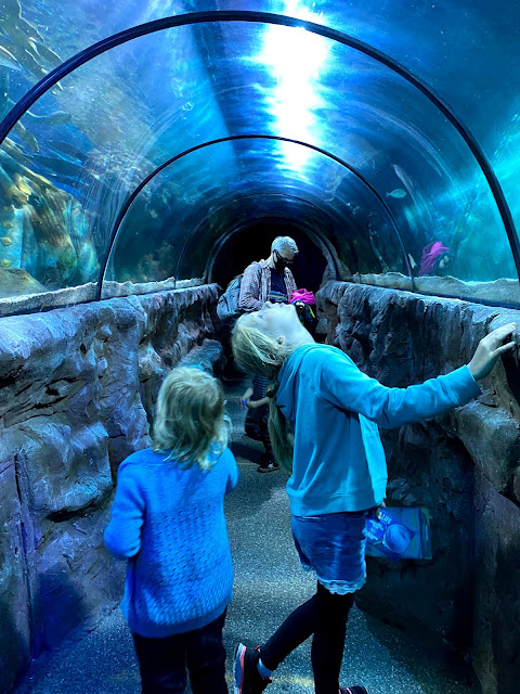 two children watching fish in an under water tunnel