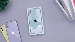 Langkah Cepat Mengaktifkan Dual E-sim Pada iPhone 11