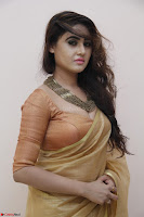 Sony Charistha in Lovely Brown Saree and Choli Spicy Pics ~  Exclusive 17.JPG