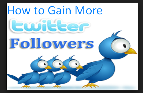 How to Gain More Followers on Twitter