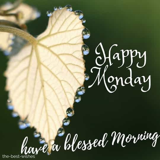 good morning have a blessed monday