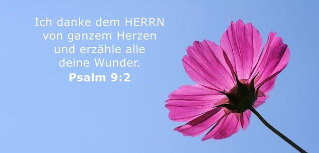 Ich danke dem HERRN von ganzem Herzen und erzähle alle deine Wunder.