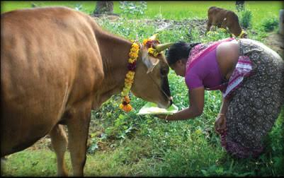 Uzhavar Thirunal Wishes | உழவர் திருநாள் வாழ்த்து