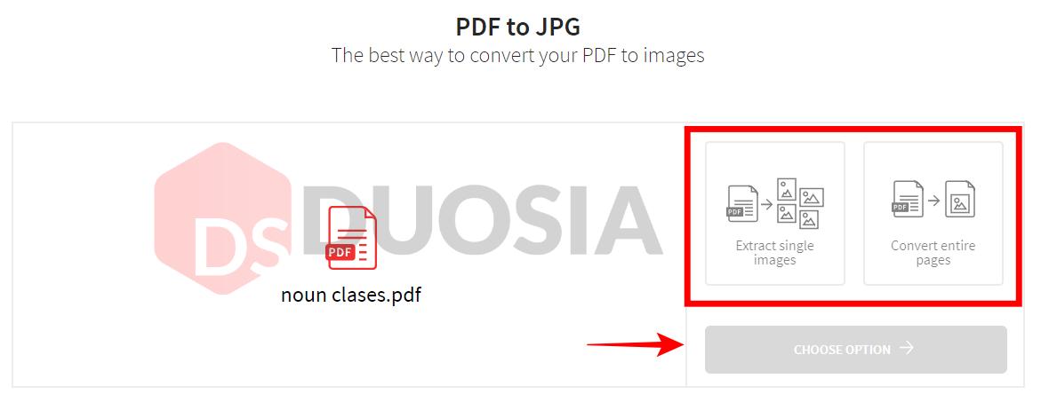 pdf jpg converter