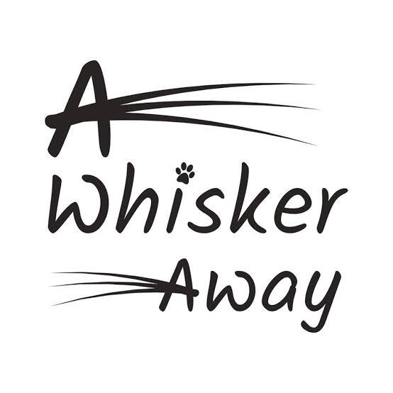 A Whisker away movie trailer cast pilot review
