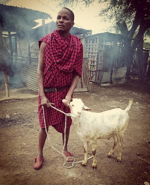 Massai-Dorf Tansania Ziege-schlachten Weltreise Backpacking