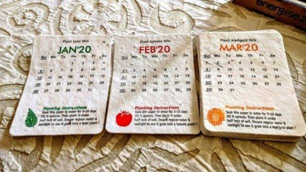 A tear-off calendar containing various seeds for planting vegetables.