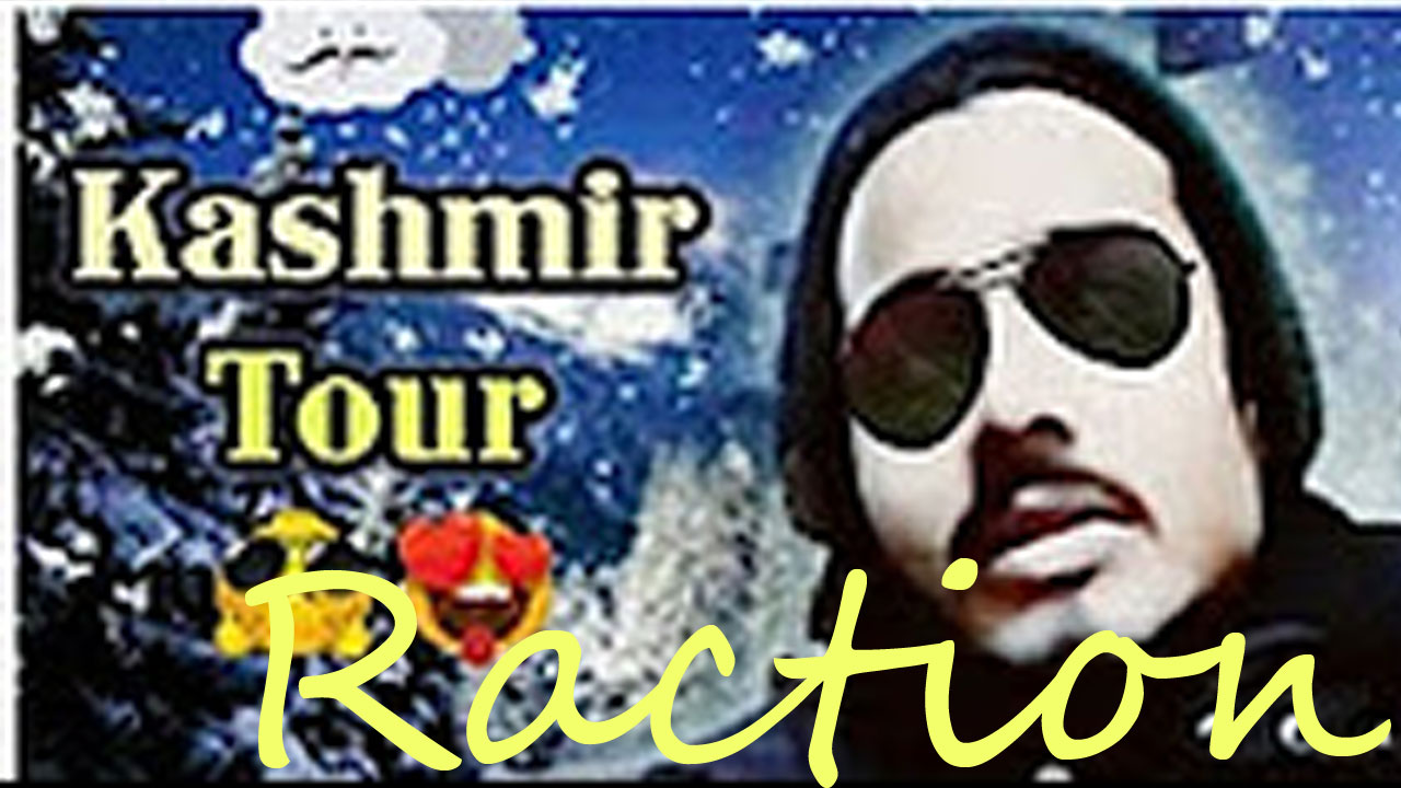 BB Ki Vines Kashmir Tour Reaction