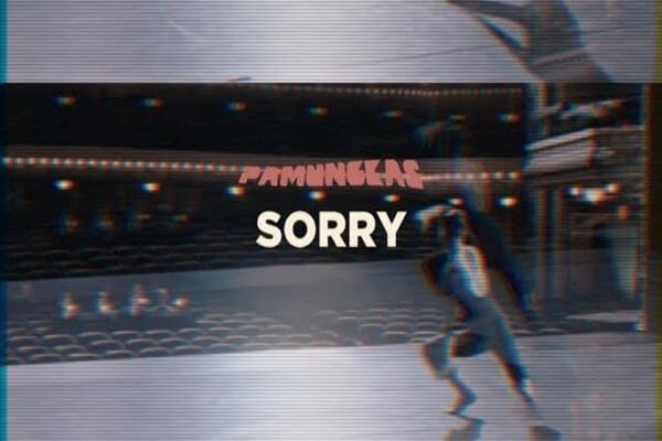 Pamungkas Sorry