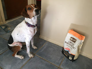 Jasmine sits with a bag of Merrick Limited Ingredient Diet food.