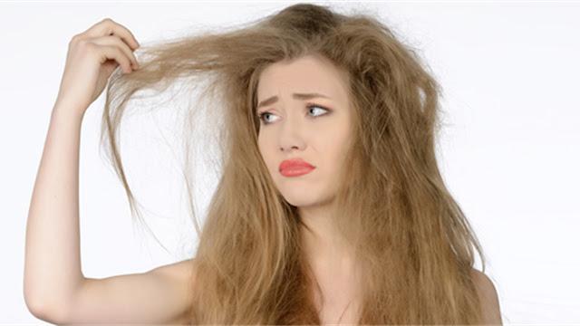 Consejos y recomendaciones para humectar el pelo seco y sin vida