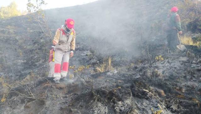 Bomberos y pobladores controlan incendio en Cusco
