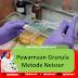 Pewarnaan Granula Metode Neisser