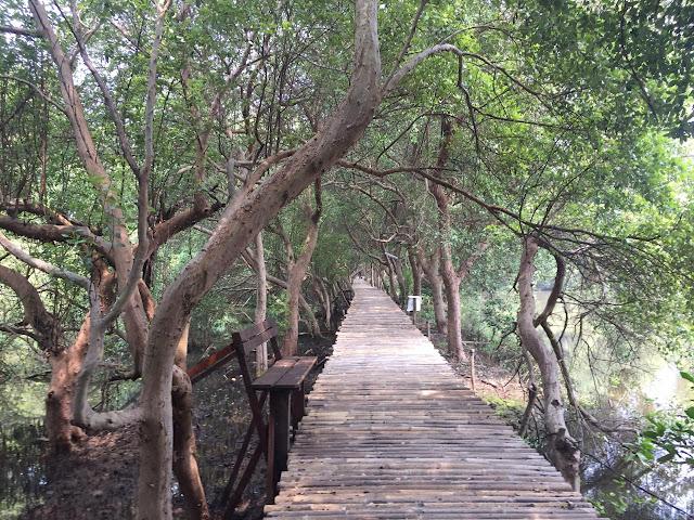 Mengintip Taman Wisata Alam Angke Kapuk
