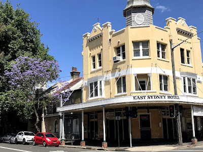 East Sydney Hotel with jacaranda tree in bloom on sunny day