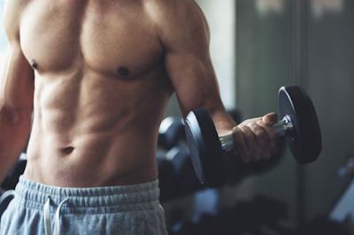 Tips Membentuk Dan Meningkatkan Massa Otot